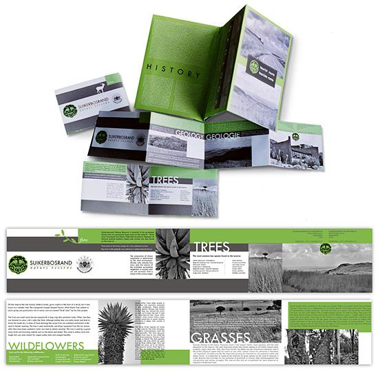 Desain Brosur Cantik dan Profesional untuk Promosi - Brosur-Desain-Cantik-dan-Profesional-15 Suikerbosrand-brochure-design-57329401