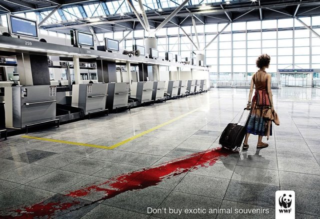 Iklan Layanan Masyarakat Paling Mengena - Iklan-ttg-perlindungan-hewan-langka