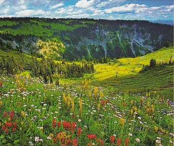 Mount Rainer, Washington, USA